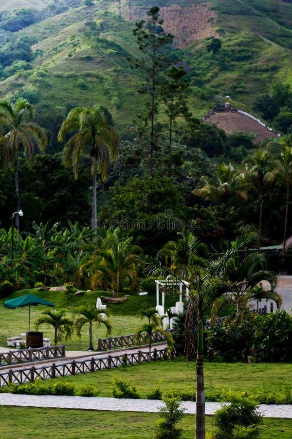 Tropisch Landschap royalty-vrije stock foto