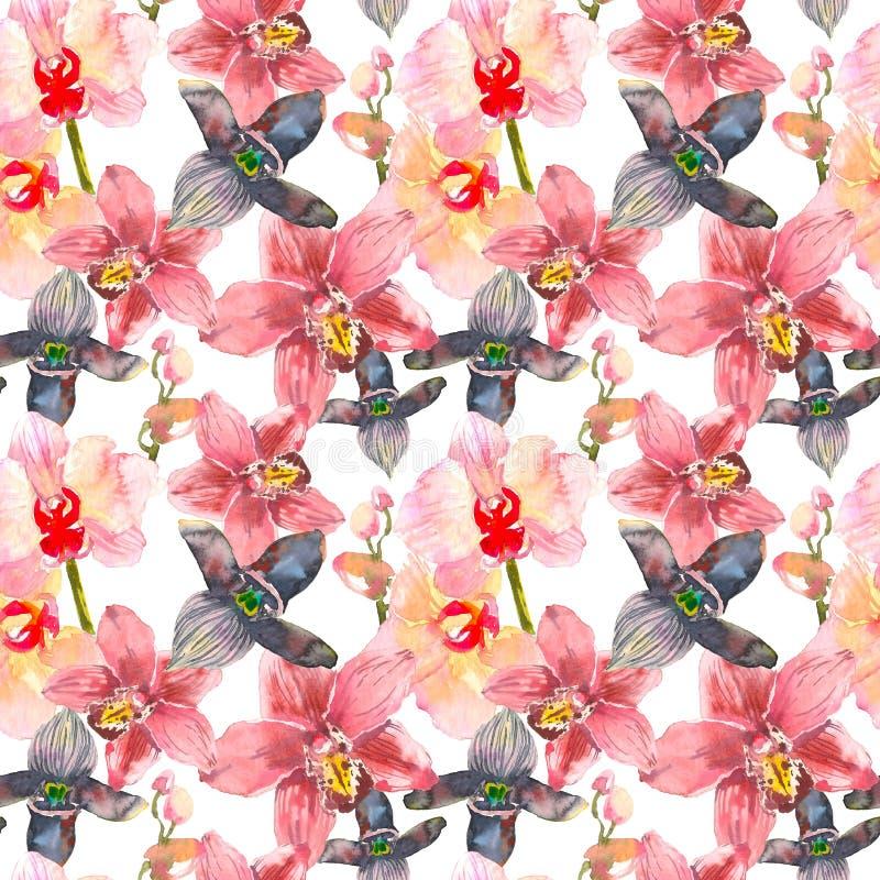 Tropisch naadloos patroon met roze orchideeënbloemen Tropisch bloemenbehang dat op witte achtergrond wordt geïsoleerd exotisch vector illustratie
