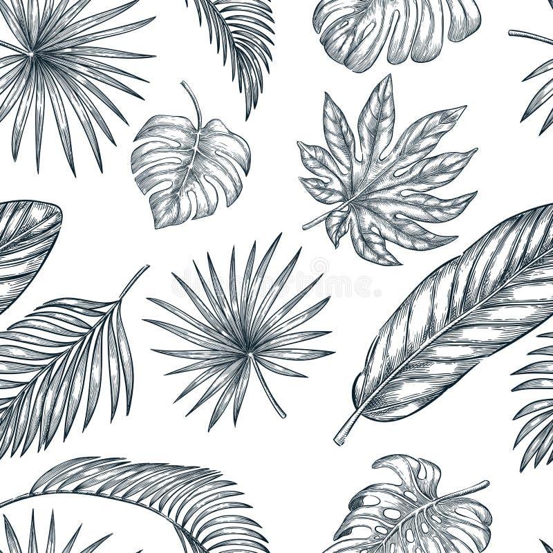 Tropisch Palmbladen naadloos vectorpatroon Schetshand getrokken illustratie van wildernisuitheemse gewassen royalty-vrije illustratie