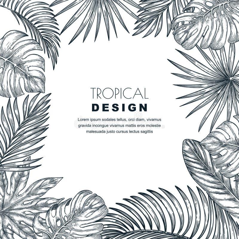 Tropisch palmbladen vector vierkant kader Schetshand getrokken illustratie van wildernisuitheemse gewassen stock illustratie