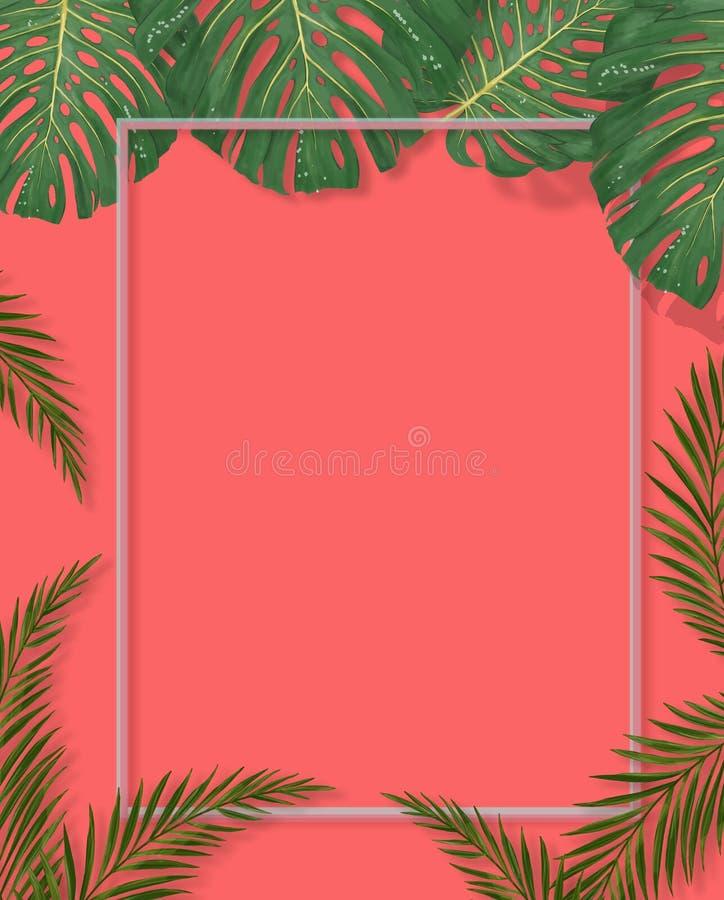 Tropisch palmbladenkader op koraalachtergrond De zomer Tropisch Blad Exotische Hawaiiaanse wildernis, zomerachtergrond pastelkleu royalty-vrije illustratie