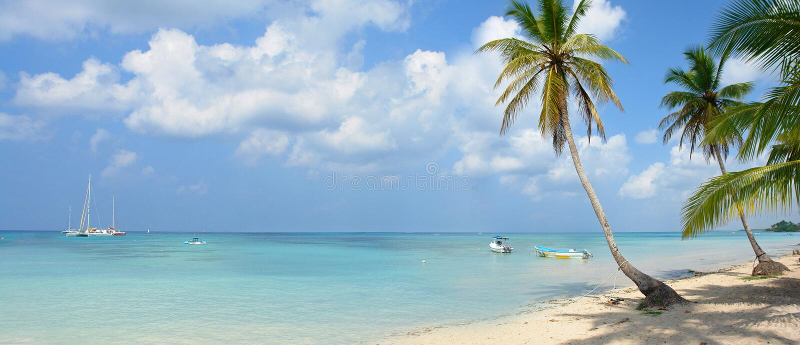 Tropisch Paradijs stock foto's