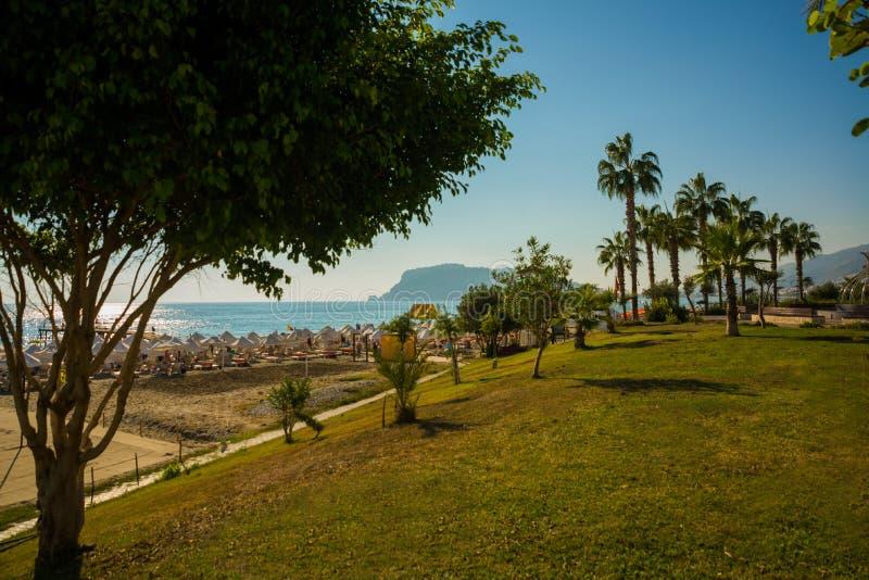 Tropisch paradijs Strand met gele zand en palmen Alanya, Antalya-district, Turkije, Azië royalty-vrije stock foto's