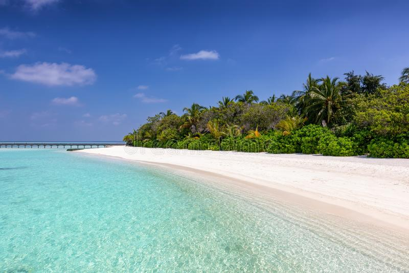 Tropisch paradijsstrand in de Maldiven stock foto's