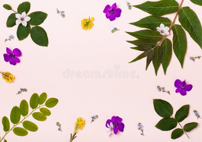 Tropisch patroon op een roze achtergrond royalty-vrije stock foto