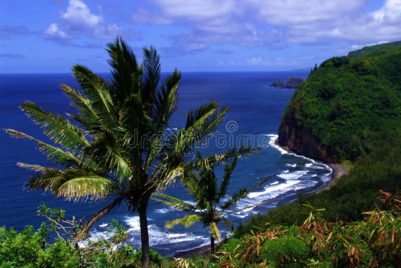 Tropisch strand royalty-vrije stock fotografie