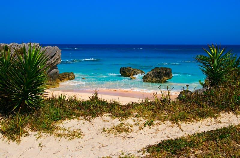 Tropisch strand (Bemuda) stock foto
