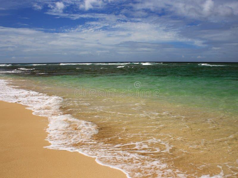 Tropisch strand, Hawaï royalty-vrije stock foto