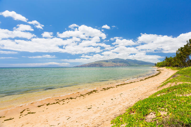 Tropisch Strand, Maui royalty-vrije stock afbeelding