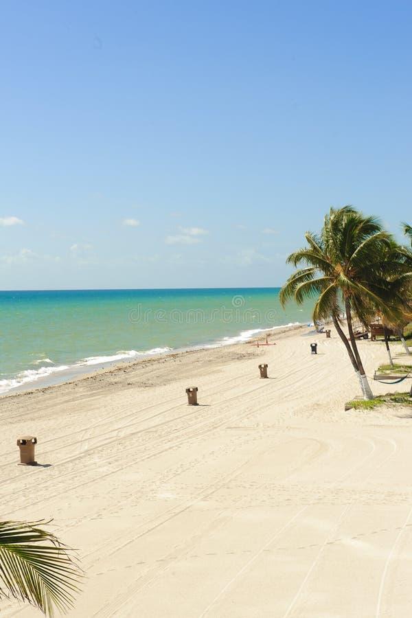 Tropisch strand met blauwe hemel royalty-vrije stock afbeelding