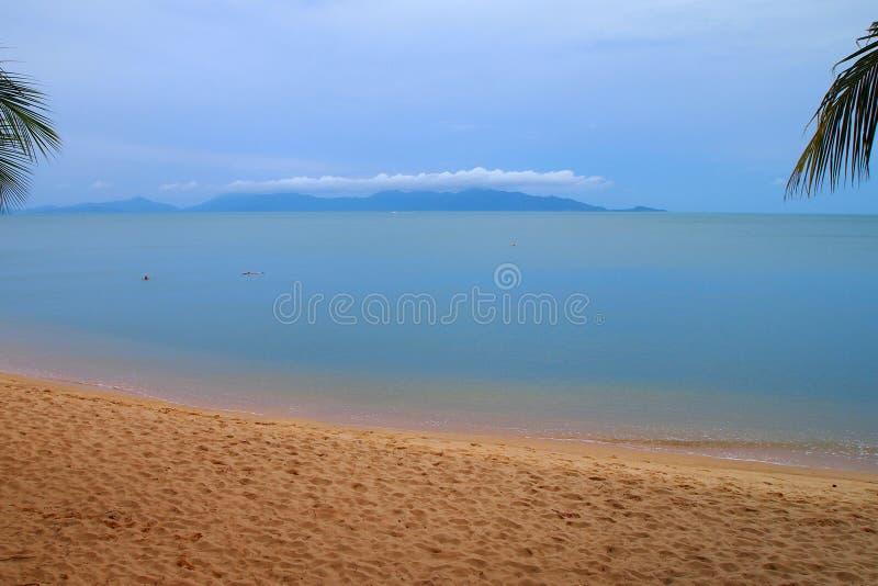 Tropisch strand met eilandpalmen royalty-vrije stock afbeelding