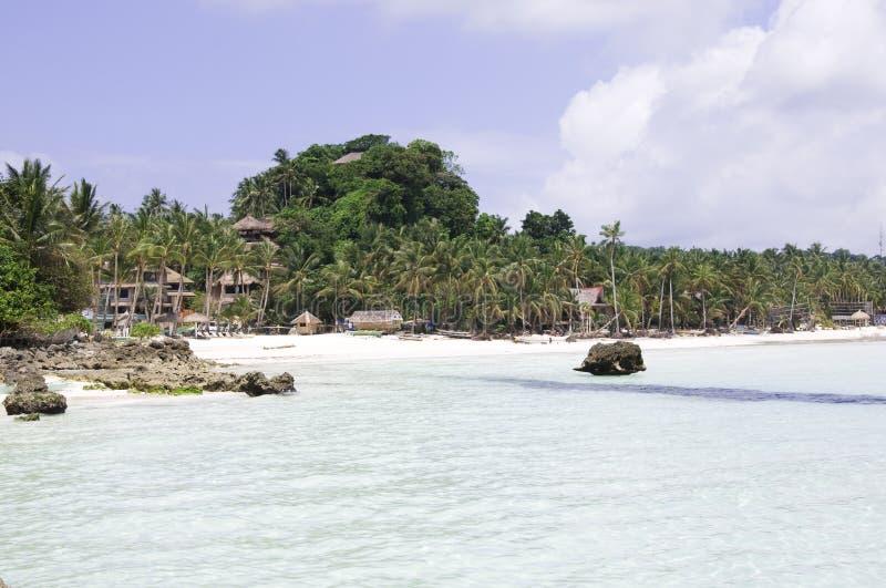 Tropisch strand met kokosnotenpalm stock fotografie