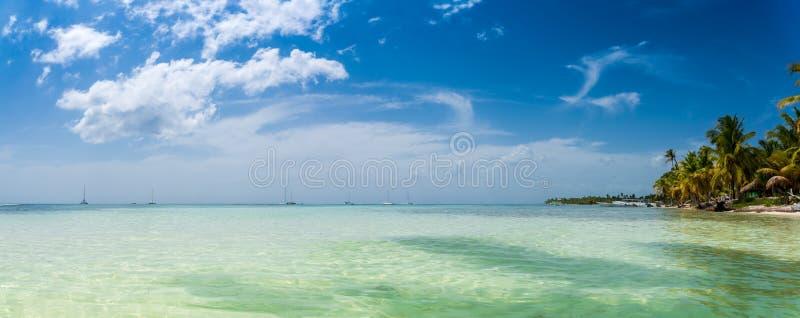 Tropisch strand met kokosnotenpalm, turkoois zeewater en wit zand op Caraïbische kustlijn royalty-vrije stock afbeeldingen