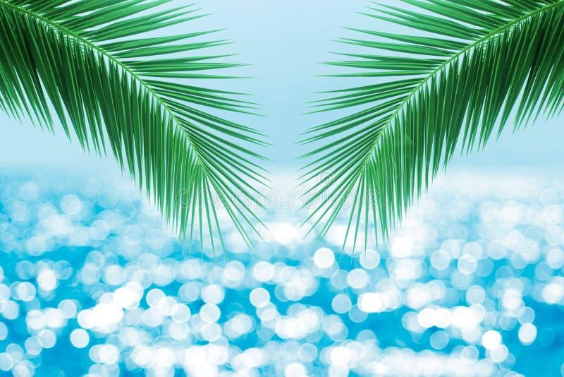 Tropisch strand met overzeese ster op zand, de achtergrond van de de zomervakantie Reis en strandvakantie, vrije ruimte voor teks royalty-vrije stock foto