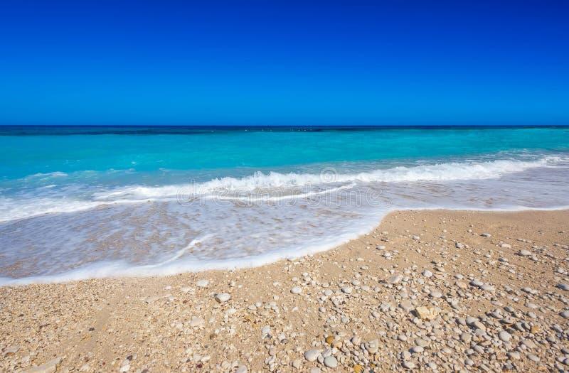 Tropisch strand in oceaan stock afbeeldingen