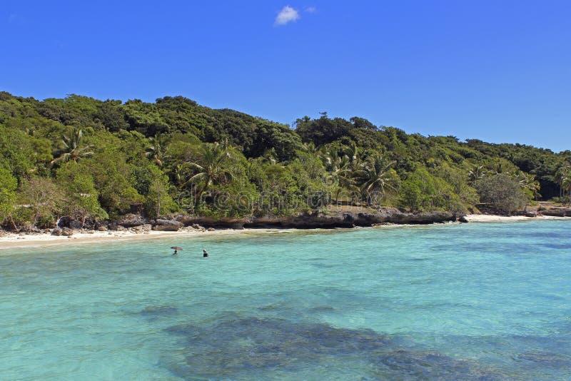 Tropisch strand op Lifou-eiland, Nieuw-Caledonië royalty-vrije stock fotografie