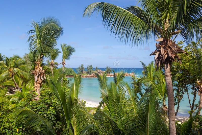 Tropisch strand op Praslin stock afbeelding