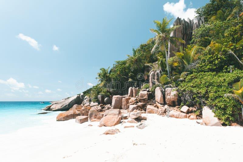 Tropisch Strand in Seychellen stock afbeeldingen