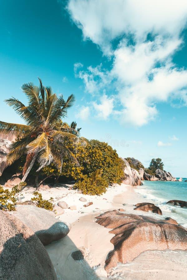 Tropisch Strand in Seychellen stock foto