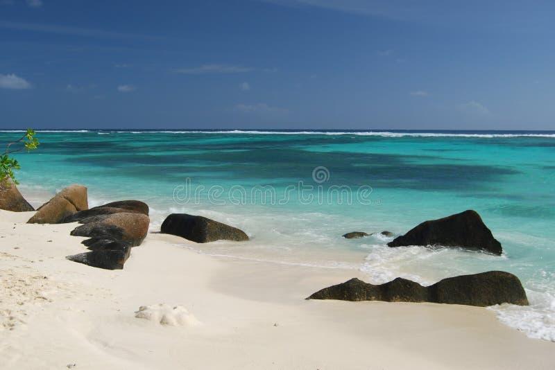 Tropisch strand in Seychellen 2 stock foto