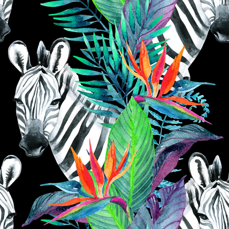 Tropisch wildernis naadloos patroon Bloemenontwerp met zebra op witte achtergrond stock illustratie