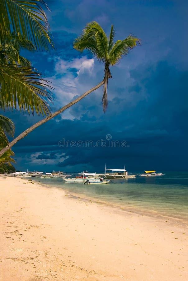 Tropisch wit zandstrand met kokospalmen stock afbeelding