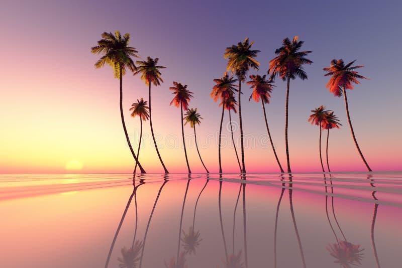 Tropisch zonsondergangroze royalty-vrije illustratie