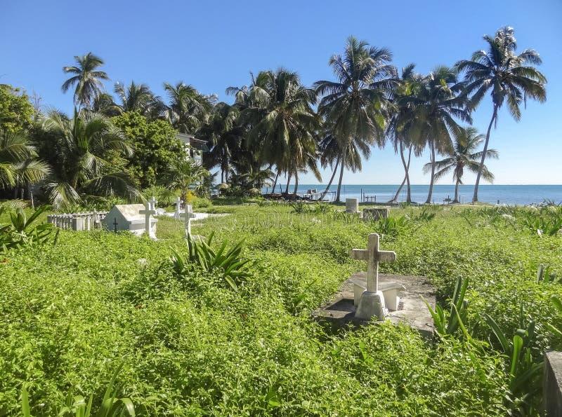 Tropische begraafplaats stock foto's