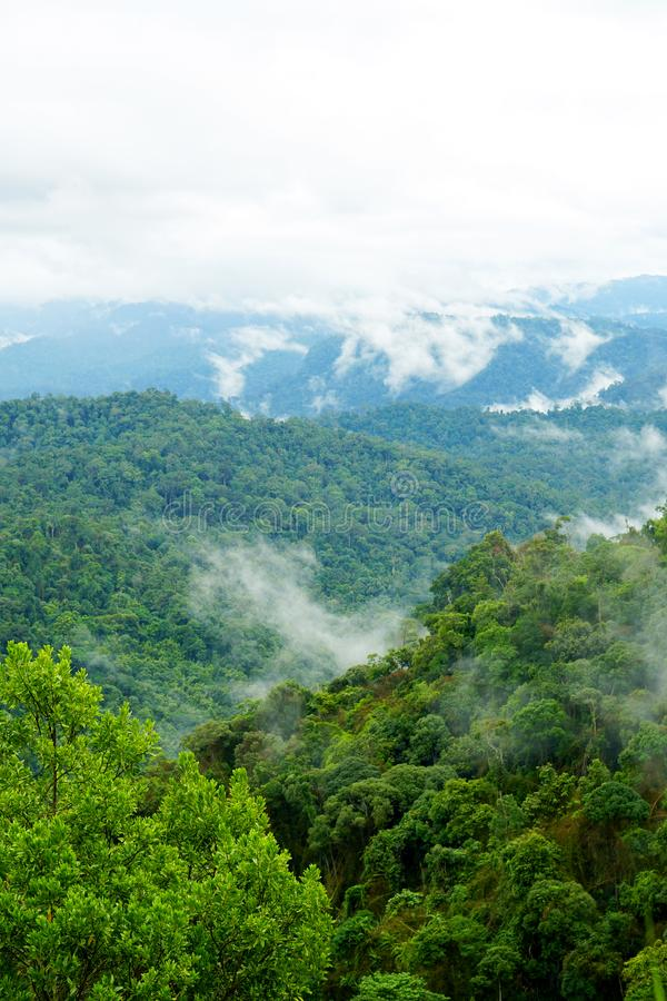 Tropische bergketenmening Weergeven van het Bewegen van Wolken en Mist over Titiwangsa-bergketen Weergeven van Hoge Vochtigheidsw royalty-vrije stock afbeelding