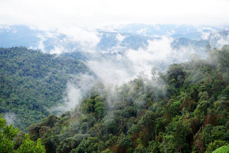 Tropische bergketenmening Weergeven van het Bewegen van Wolken en Mist over Titiwangsa-bergketen Weergeven van Hoge Vochtigheidsw stock foto's