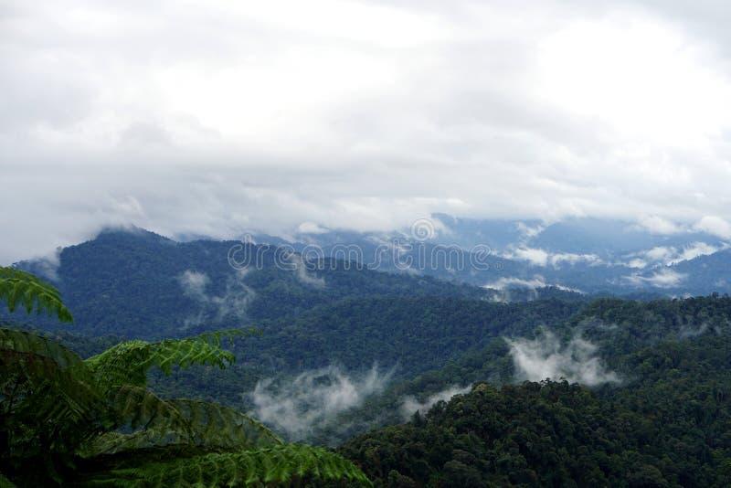 Tropische bergketenmening Weergeven van het Bewegen van Wolken en Mist over Titiwangsa-bergketen Weergeven van Hoge Vochtigheidsw stock foto