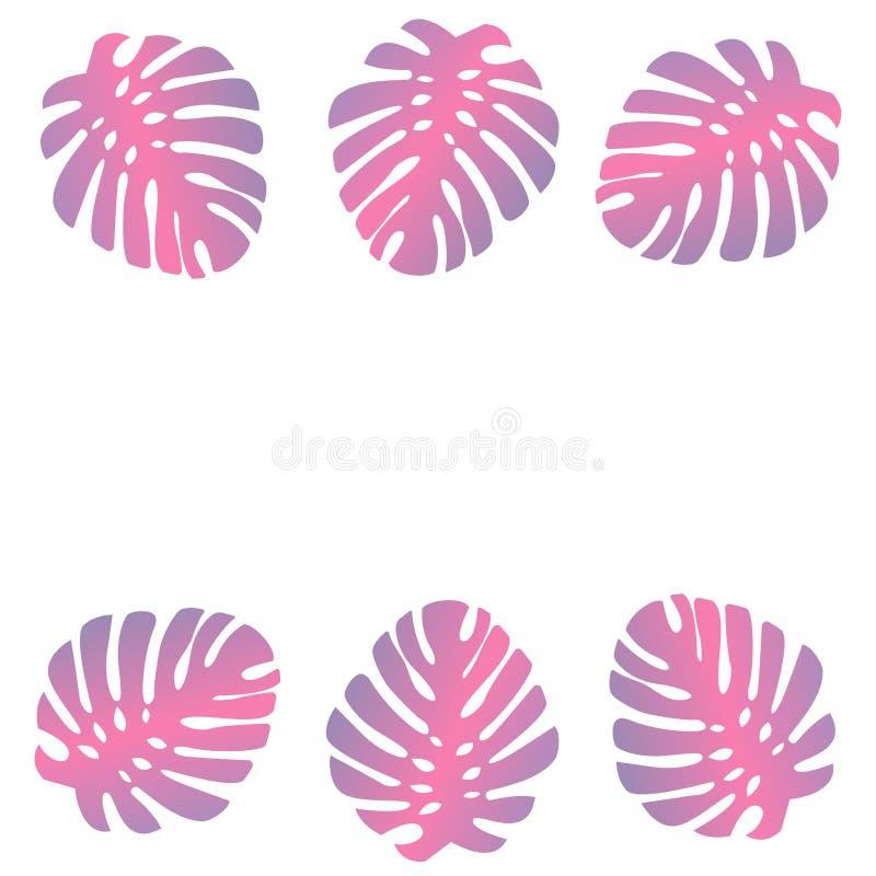 Tropische Blätter der Palme der Monstera-Anlage sind in einer modernen Art rosa Für Hintergrund oder Karten Einige Blätter und Ra lizenzfreie abbildung