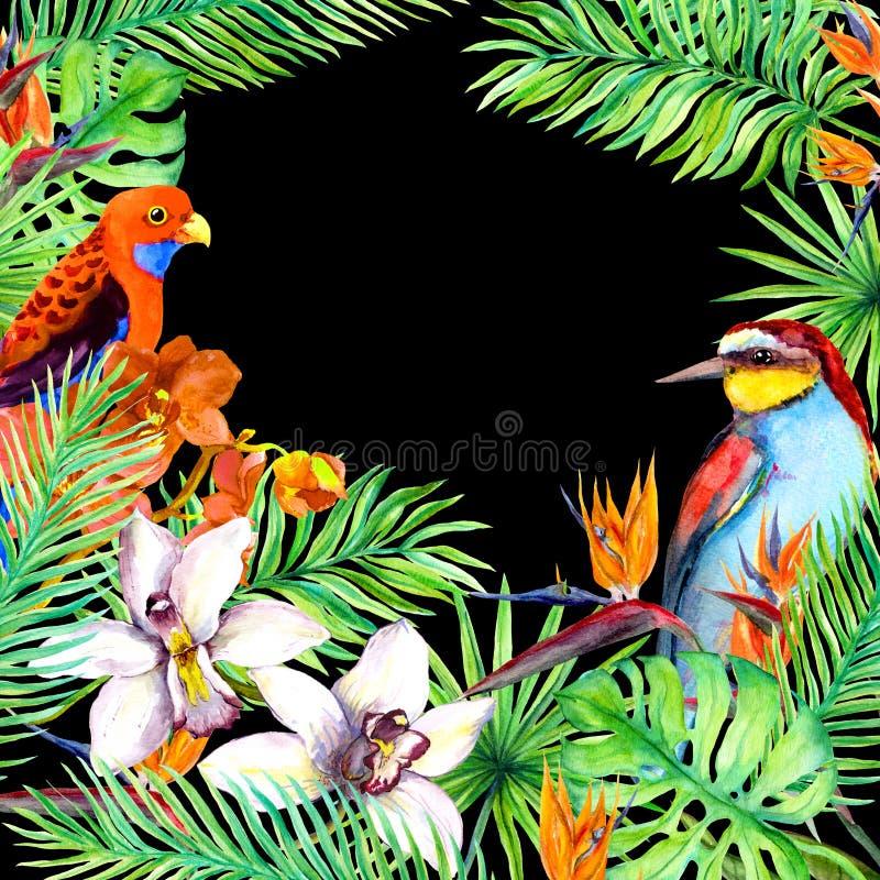 Tropische Blätter, exotische Vögel, Orchidee blüht postkarte watercolor vektor abbildung