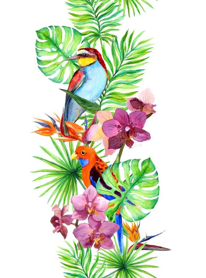 Tropische Blätter, exotischer Papageienvogel, Orchidee blüht Nahtloser Rand Wasserfarbrahmen lizenzfreie abbildung