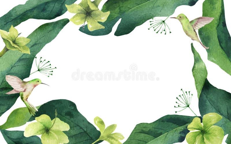 Tropische Blätter, Kolibri und Blumen der Aquarellvektorkarte lokalisiert auf weißem Hintergrund stock abbildung