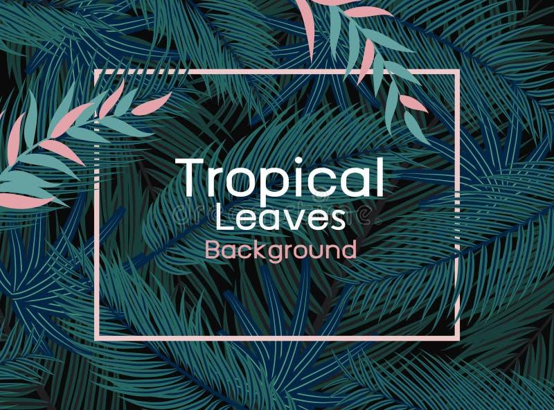 Tropische Blätter mit rosa Linie Rahmen auf schwarzer Hintergrundvektorillustration lizenzfreie abbildung