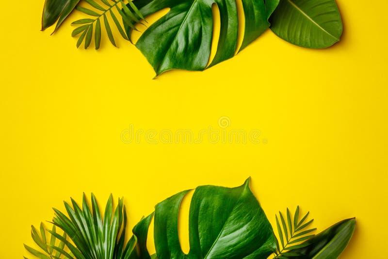 Tropische Blätter und Blumen auf gelbem Hintergrund stockbild