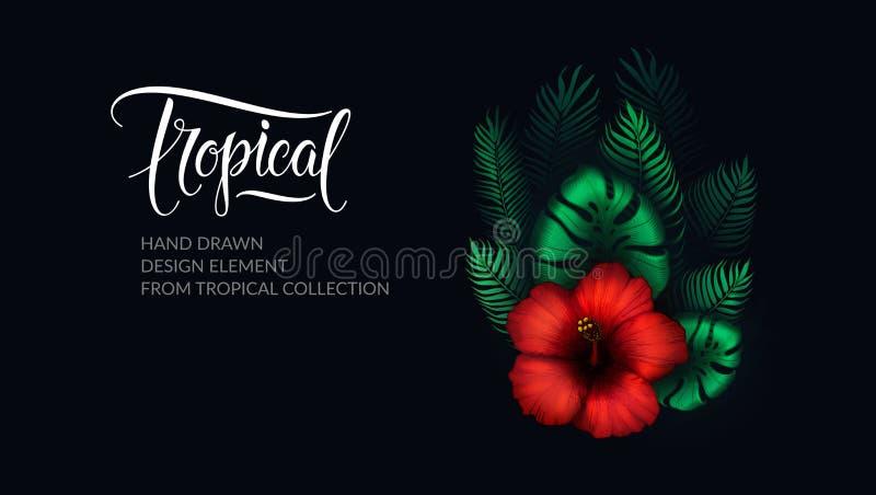 Tropische bladeren, hibiscus en het elegante tropische van letters voorzien op zwarte achtergrond Exotische bloem, palmbladen, mo royalty-vrije illustratie
