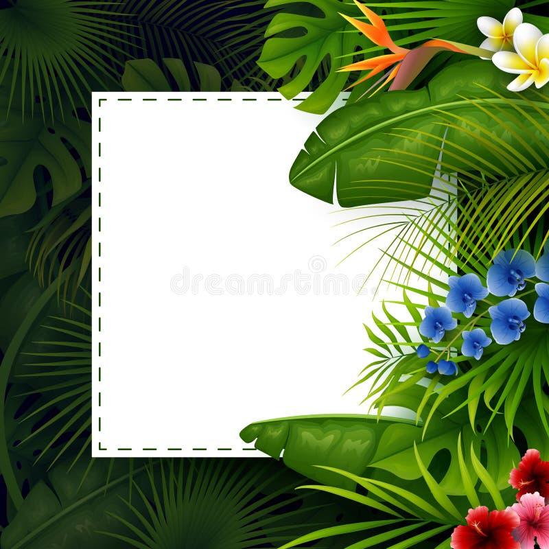 Tropische bladeren met wit kaderdocument voor tekst op donkere achtergrond stock illustratie