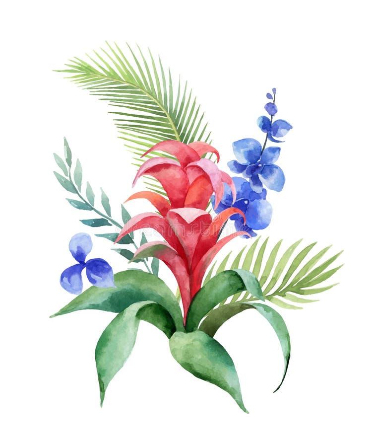 Tropische bladeren van het waterverf de vectorboeket en heldere exotische die bloemen op witte achtergrond worden geïsoleerd royalty-vrije illustratie