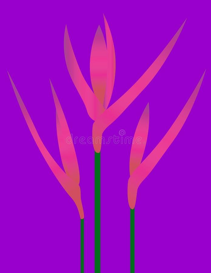 Tropische Bloemen royalty-vrije illustratie