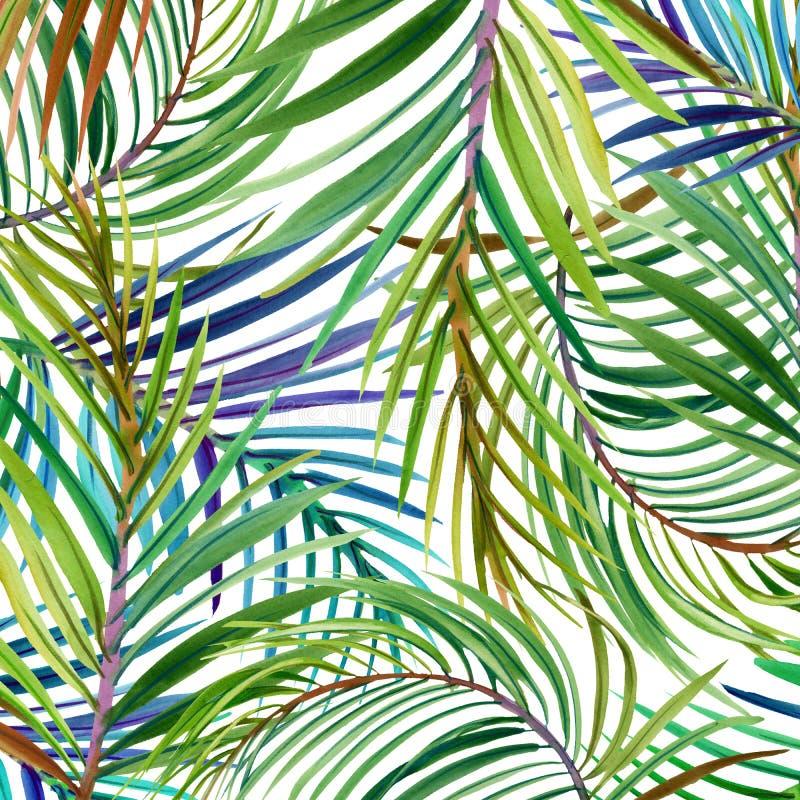 Tropische bloemen, bladeren watercolor royalty-vrije illustratie