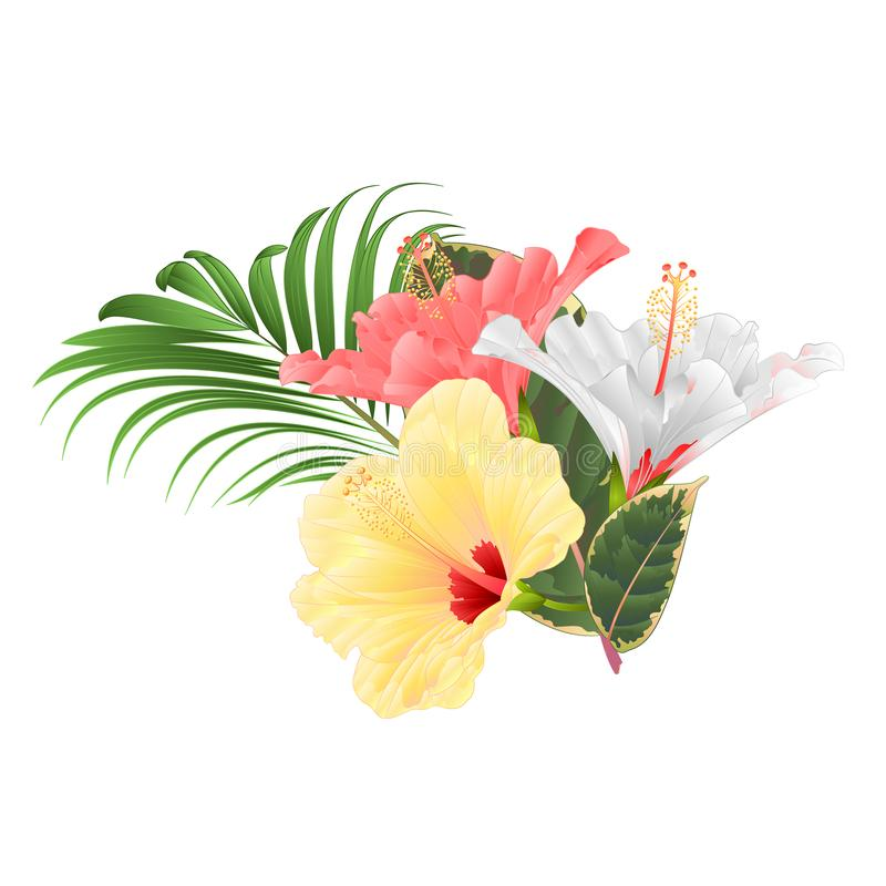 Tropische bloemen bloemenregeling, met roze witte en gele hibiscus en van de palmficus uitstekende vector editable illustratie stock illustratie