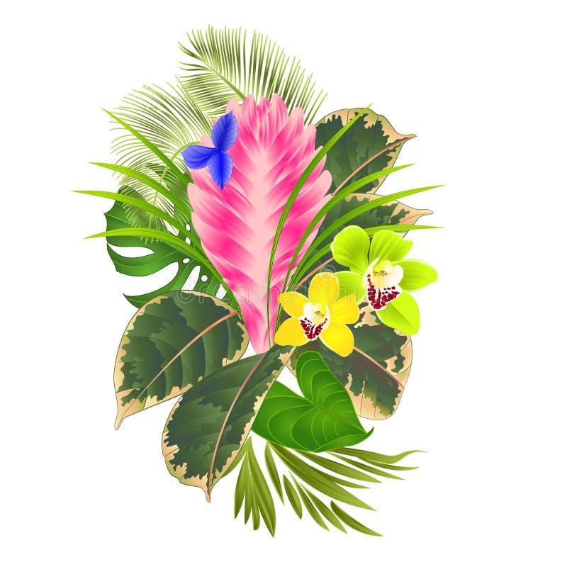 Tropische bloemen bloemenregeling, met tillandsiacyanea en van orchideeëncymbidium palm, philodendron uitstekende vectorillustrat vector illustratie