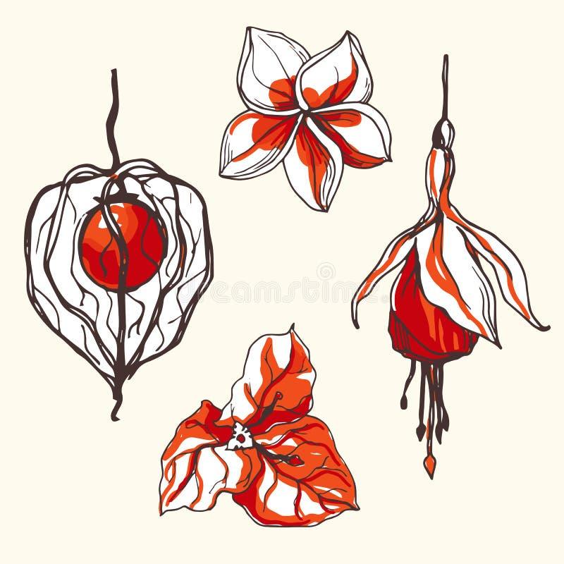 Tropische bloemen en vruchten pictogrammen royalty-vrije illustratie