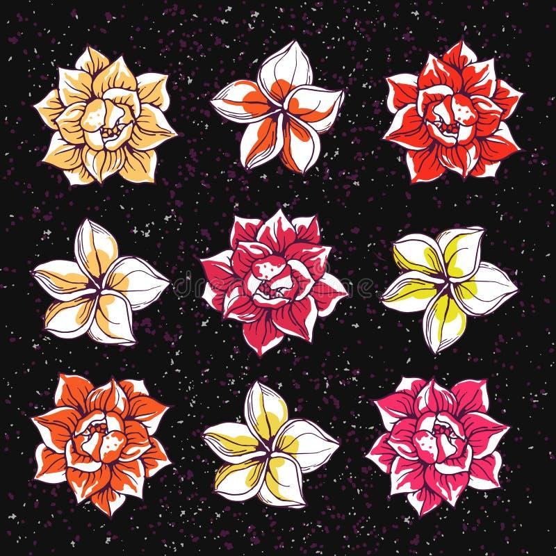 Tropische bloemenpictogrammen stock illustratie