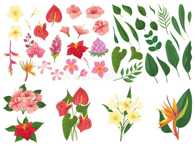 Tropische Blume Tropische Waldblumen, exotische Tropenbetriebsblätter und blühender Niederlassungsvektorillustrationssatz lizenzfreie abbildung