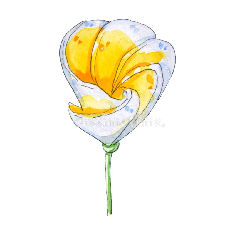 Tropische Blumen des handgemalten Aquarells vektor abbildung