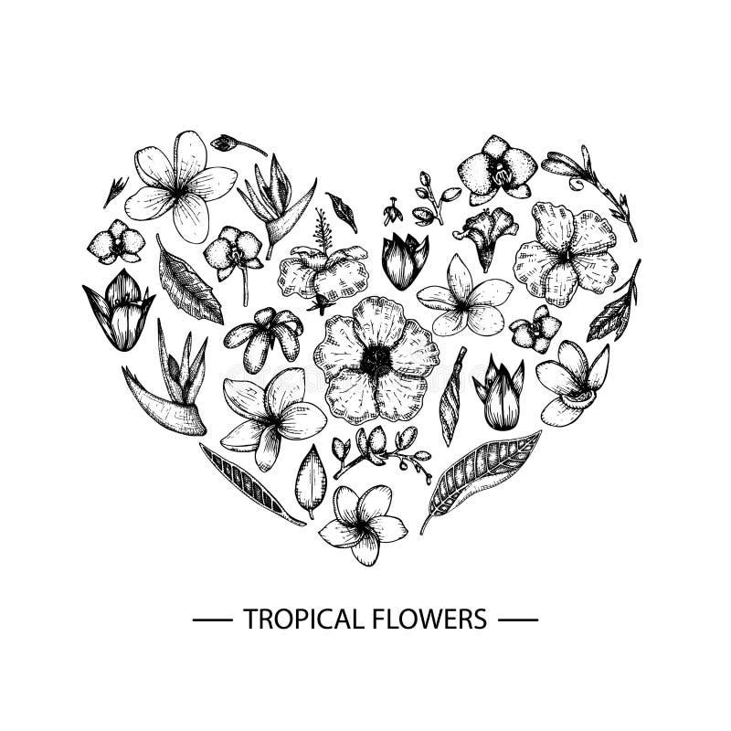 Tropische Blumen des Vektors eingestellt in eine Herzform lizenzfreie abbildung