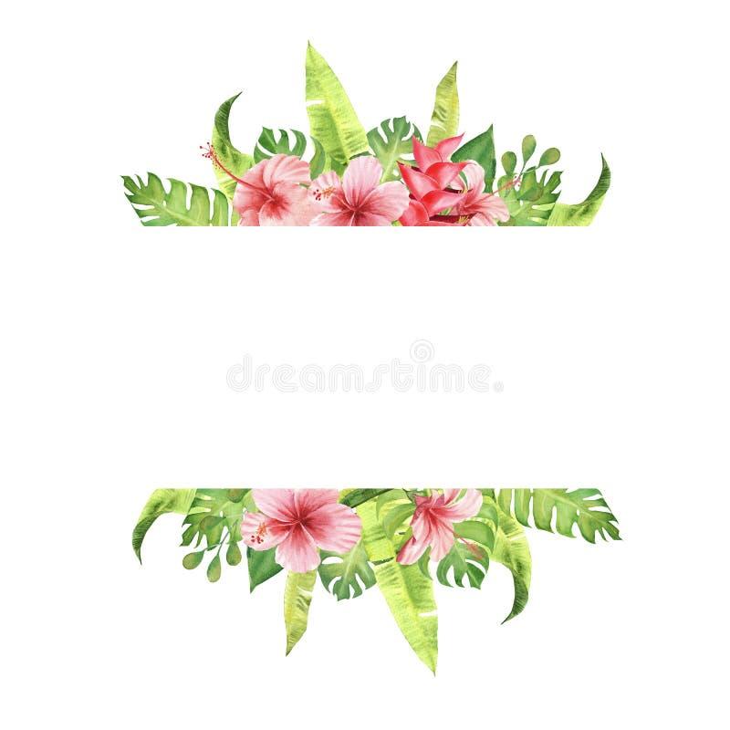 tropische Blumen und Blätter Aquarellgrenzrahmen Rosas monstera und Hibiscusblumenstrauß lizenzfreie abbildung